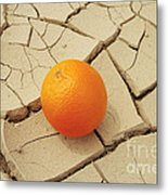 Juicy Orange And Drought. Metal Print by Alexandr  Malyshev