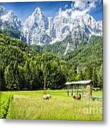 Julian Alps Farm Metal Print