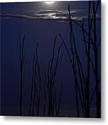 July 2014 Super Moon Metal Print