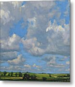 July In The Valley Metal Print