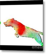 Jumping Dog Metal Print