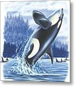 Jumping Orca Metal Print by JQ Licensing