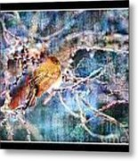 Junco On Icy Branch - Digital Paint II Metal Print