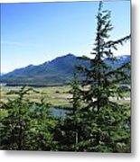 Juneau From Glacier Gardens Metal Print
