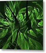 Jungle Clearing  Metal Print