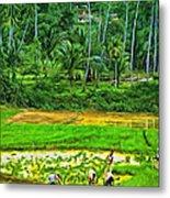 Jungle Homestead - Paint  Metal Print