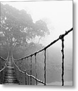 Jungle Journey 5 Metal Print by Skip Nall