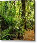 Jungle Scene Metal Print by Les Cunliffe