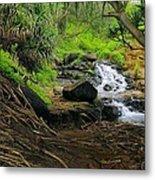 Jungle Stream Kauai Metal Print