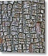 Juniper Bark- Texture Collection Metal Print