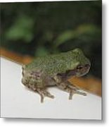 Just A Little Guy Metal Print