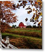 Just Across The Fence Metal Print