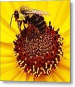 Just Bee Metal Print