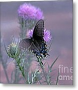 Just Fluttering By Metal Print