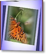 Just For You . . One Of A Kind Metal Print