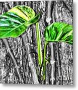 Just Green 2 By Diana Sainz Metal Print
