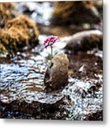 Just Let Your Love Flow Metal Print