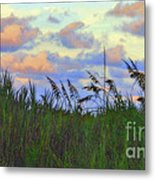 Just Over The Dune Metal Print
