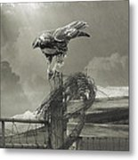 Juvenile Redtail On Post With Barbed Wire Metal Print