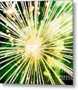 Kaboom Metal Print by Suzanne Luft