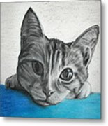 Kahlua Kitty Metal Print