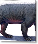 Kayentatherium, A Mammal-like Metal Print