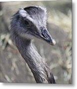Keep In View - Emu Portrait Metal Print