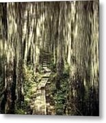 Keep On The Path Metal Print
