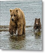 Keeping Up With Mom Metal Print