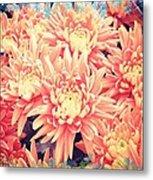 Keepsake Chrysanthemum  Metal Print