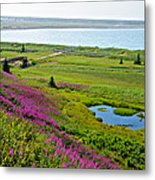 Kenai River Outlet On The Cook Inlet In Kenai-ak Metal Print