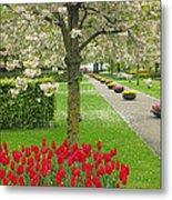 Keukenhof Gardens 33 Metal Print
