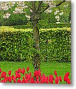 Keukenhof Gardens 34 Metal Print