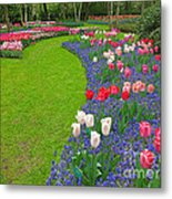 Keukenhof Gardens 52 Metal Print
