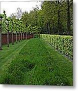 Keukenhof Gardens Panoramic 10 Metal Print