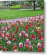 Keukenhof Gardens Panoramic 49 Metal Print