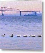 Key Bridge And Waterfowl Metal Print