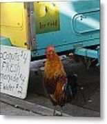 Key West - Rooster Making A Living Metal Print