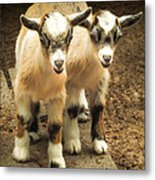 Kids One And Two Metal Print