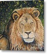 King Of The African Savannah Metal Print