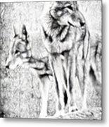Alpha Male Black And White Metal Print
