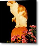 King Of The Pumpkin Metal Print
