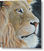 King Of The Forest.  Sold Metal Print