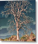 King's Tree Metal Print