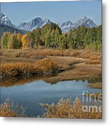 Kiss Of Fall In The Grand Tetons Metal Print