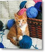 Kitten Playing With Yarn Metal Print