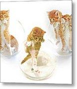 Kittens In Bowl Metal Print
