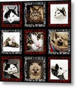 Kitty Cat Tic Tac Toe Metal Print