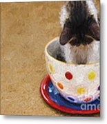 Kitty Cat Time Out Metal Print