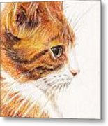 Kitty Kat Iphone Cases Smart Phones Cells And Mobile Cases Carole Spandau Cbs Art 338 Metal Print